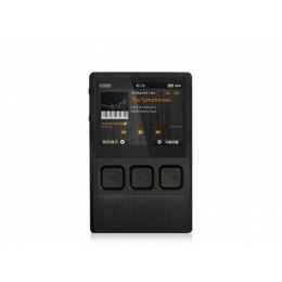iBasso DX90 (силиконовый чехол в подарок)